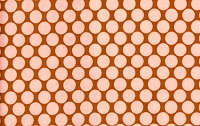 Full Moon Polka Dot in Camel - Amy Butler - Lotus